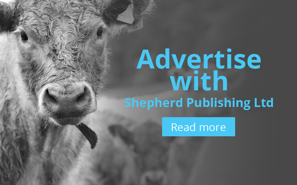Advertise with Sheperd Publishing Ltd